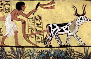 Plowing farmer, Burial chamber of Sennedjem
