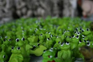 Frog toys